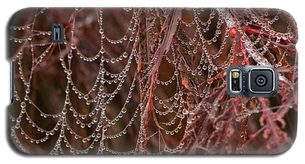 Beads Of Raindrops Galaxy S5 Case