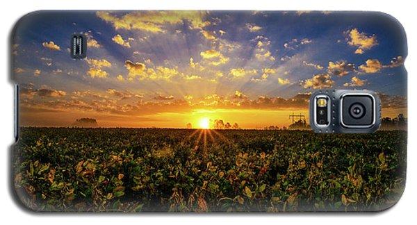 Bean Field Dawn Galaxy S5 Case
