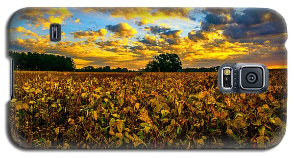 Bean Field Splendor  Galaxy S5 Case by John Harding