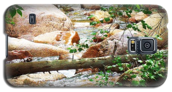 Bear Creek Cheyenne Canyon Galaxy S5 Case by Clarice  Lakota