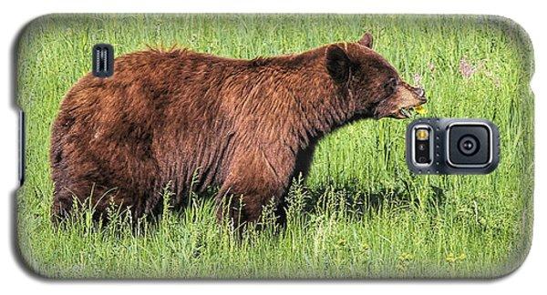 Bear Eating Daisies Galaxy S5 Case