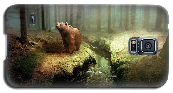 Fantasy Galaxy S5 Case - Bear Mountain Fantasy by David Dehner