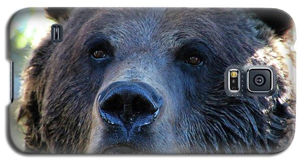 Bear On Grouse Galaxy S5 Case