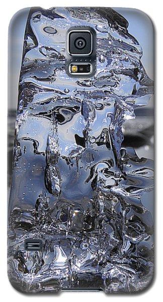 Galaxy S5 Case featuring the photograph Bear Sunbathing by Sami Tiainen