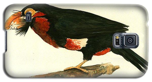 Toucan Galaxy S5 Case - Bearded Barbet by Juan Bosco