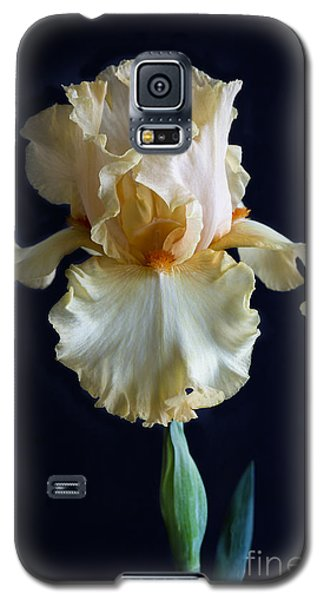 Galaxy S5 Case featuring the photograph Bearded Iris 3 by Elena Nosyreva