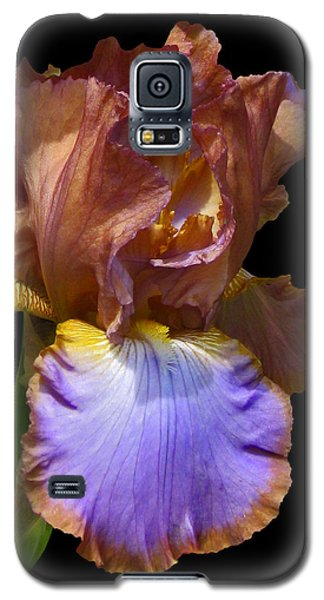 Bearded Iris With Black Background Galaxy S5 Case