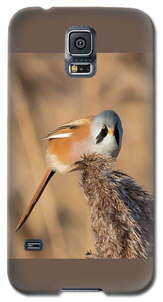 Bearded Reedling Galaxy S5 Case