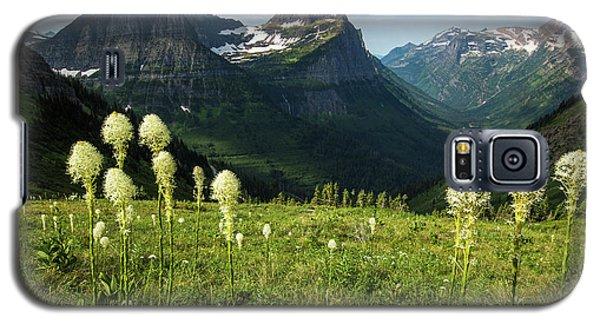 Beargrass - Glacier Np Galaxy S5 Case