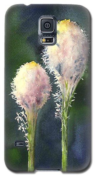 Beargrass Galaxy S5 Case