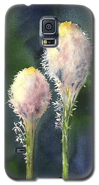 Beargrass Galaxy S5 Case