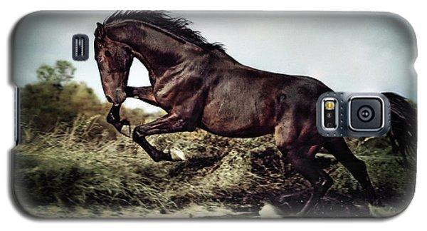 Beautiful Black Stallion Horse Running On The Stormy Sky Galaxy S5 Case