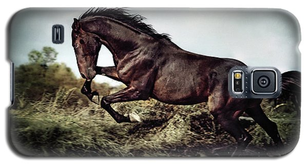 Beautiful Black Stallion Horse Running On The Stormy Sky Galaxy S5 Case
