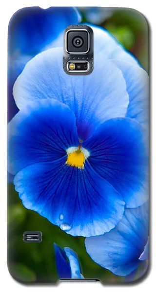 Beautiful Blues Galaxy S5 Case