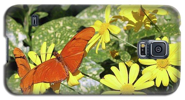Beautiful Butterflies Galaxy S5 Case