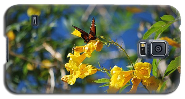 Galaxy S5 Case featuring the photograph Beautiful Butterfly by Donna Greene