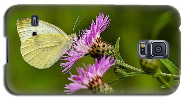 Beautiful Butterfly On Pink Thistle Galaxy S5 Case