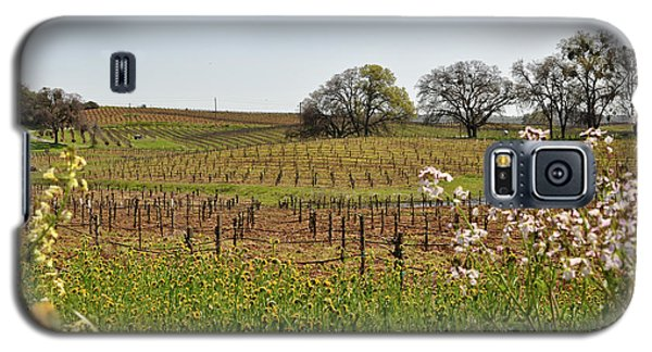 Beautiful California Vineyard Framed With Flowers Galaxy S5 Case
