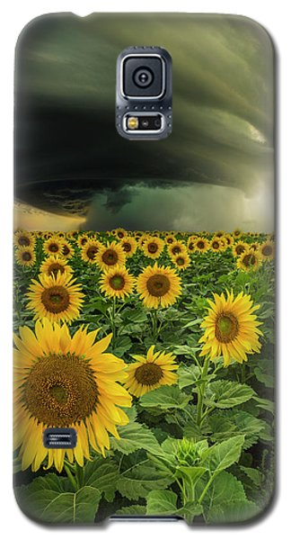 Beautiful Destruction  Galaxy S5 Case