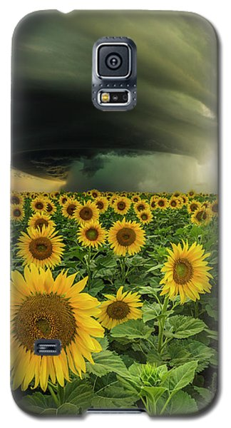 Beautiful Destruction  Galaxy S5 Case