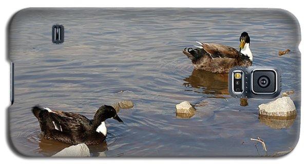 Beautiful Ducks Galaxy S5 Case