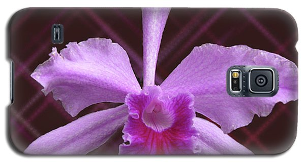 Galaxy S5 Case featuring the photograph Beautiful Floating Orchid by Donna Brown