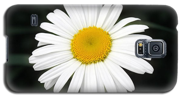 Galaxy S5 Case featuring the photograph Beautiful Flower by Milena Ilieva