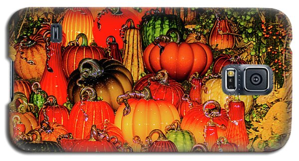 Beautiful Glass Pumpkins Galaxy S5 Case