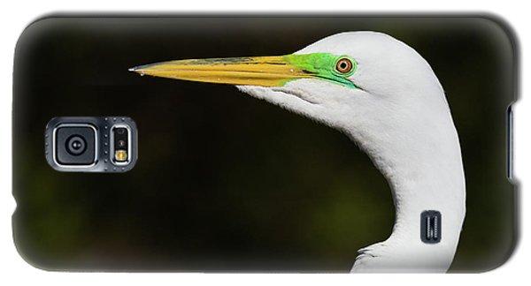 Beautiful Green Lores Galaxy S5 Case