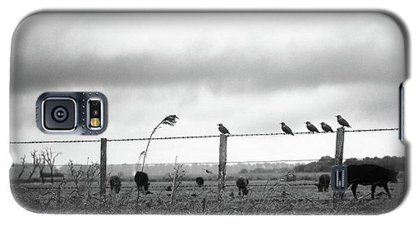 Beautiful Little Birds On Fence Galaxy S5 Case