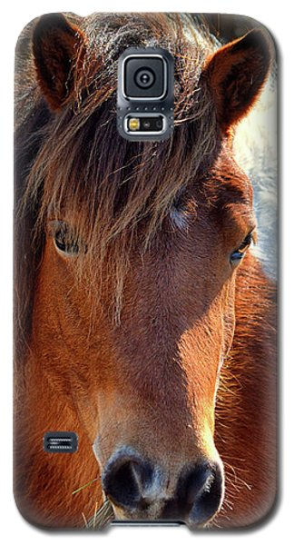Beautiful Mare Ms. Macky Galaxy S5 Case