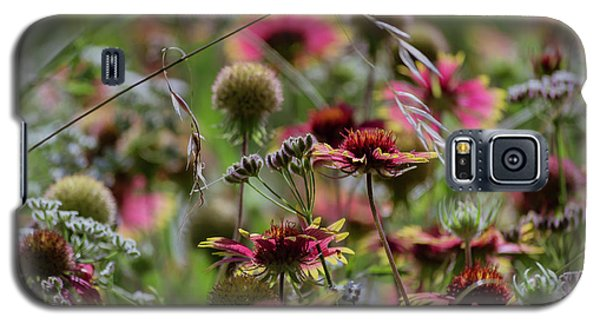 Beautiful Purple And Yellow Wildflowers Galaxy S5 Case
