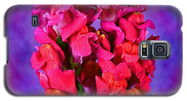 Beautiful Snapdragon Flowers Galaxy S5 Case