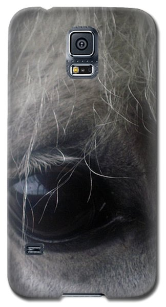 Beautiful Spirit Galaxy S5 Case