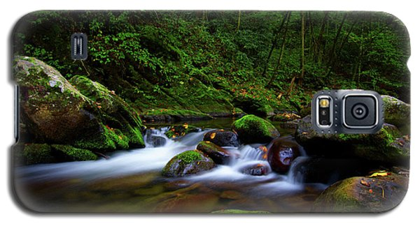 Beautiful Stream In Tremont Smoky Mountains Tennessee Galaxy S5 Case