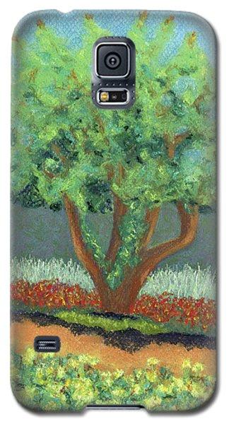 Beautiful Tree Galaxy S5 Case