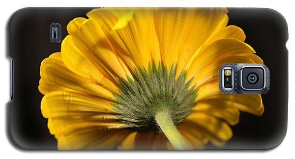 Galaxy S5 Case featuring the photograph Beautiful Underside by Jeff Swan