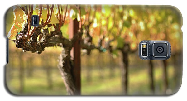 Beautiful Vineyard In Napa Valley Galaxy S5 Case