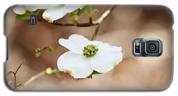 Galaxy S5 Case featuring the photograph Beautiful White Flowering Dogwood Blossoms by Stephanie Frey