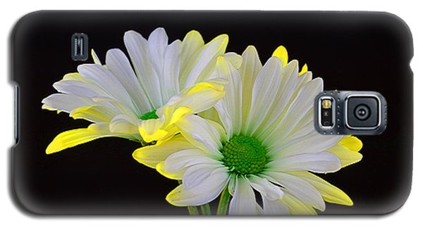 Beautiful Wonder Galaxy S5 Case