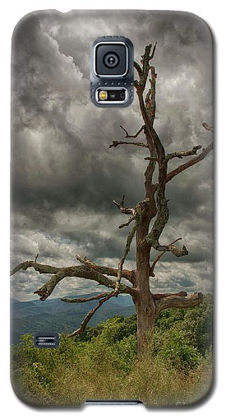 Beautifully Dead Galaxy S5 Case