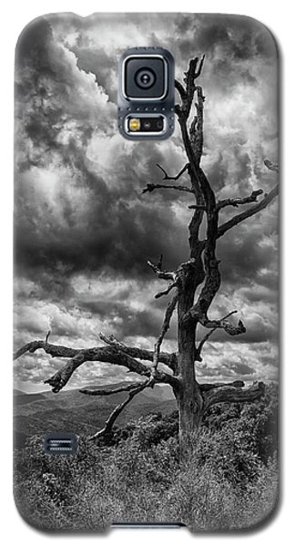 Beautifully Dead In Black And White Galaxy S5 Case