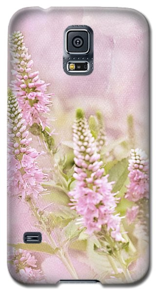 Galaxy S5 Case featuring the photograph Beautilicious by Betty LaRue
