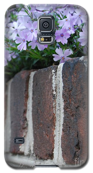 Galaxy S5 Case featuring the photograph Beauty And Bricks by Linda Mesibov