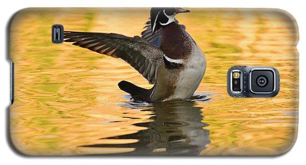 Wood Duck Sunset  Galaxy S5 Case