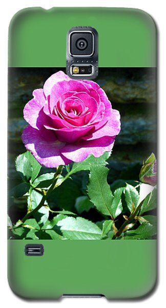 Galaxy S5 Case featuring the photograph Beauty And The Bud by Will Borden