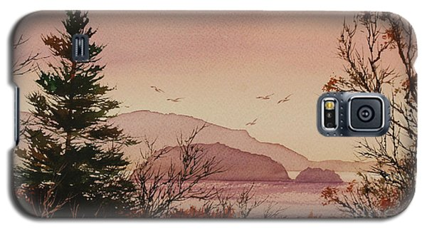 Galaxy S5 Case featuring the painting Beauty At The Shore by James Williamson
