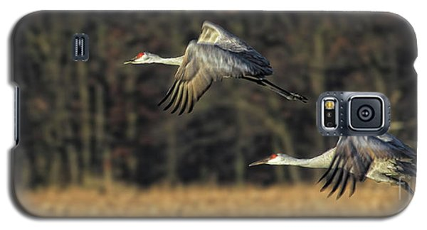 Beauty In Motion Galaxy S5 Case