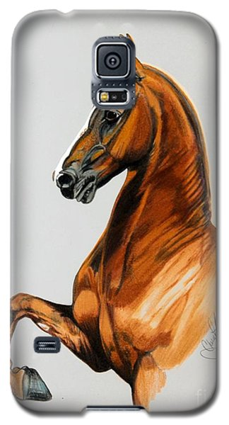 Sirtainly Stylish  - Saddlebred Galaxy S5 Case