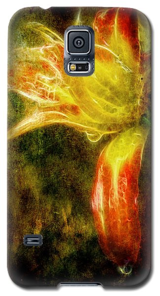 Beauty In The Darkness Galaxy S5 Case